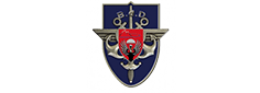 Logo of defense base of Pau Bayonne and Tarbes